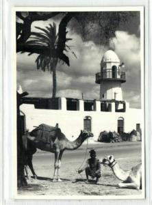 yemen, ADEN, Sheikh Othman, Mosque, Camel (1950s) RPPC