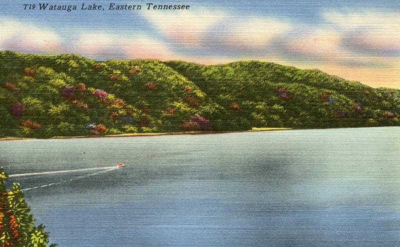 TN - Watauga Lake