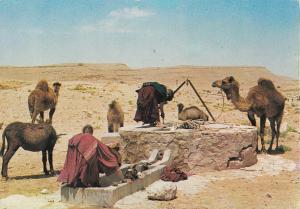 Tunisia ethnic life desert water source fountain postcard