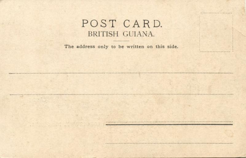 british guiana, GEORGETOWN DEMERARA, Main Street, Government House (1899)