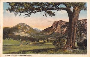 ESTES PARK COLORADO BLACK CANYON~W T PARKE PUBL POSTCARD 1920s