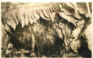 Chattanooga Tennessee Fish Market Lookout Mtn Caves 1943 RPPC Postcard 12991