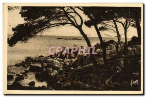 Old Postcard Antibes La Pinede