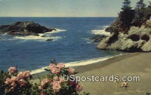 Pacific Ocean Seacoast, Washington Postcard     ;      Pacific Ocean Seacoast...