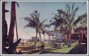 Hawaii Royal Hawaiian Hotel Postcard