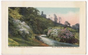 North Staffordshire Railway Official, River Hamps Nr Beeston Tor PPC, Unposted