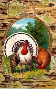 Thanksgiving With Turkey 1911