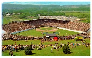 Pennsylvania Williamsport Howard J. Lamade Field Little League Baseball  Field