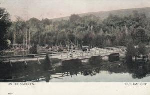 DURHAM , Ontario, 1908 : On the Saugeen