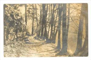RP  Liebenhain , Uferpartie, Germany Pre-1907