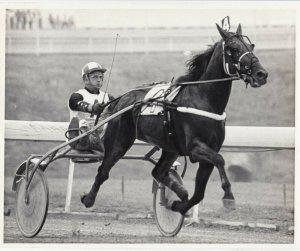 Harness Horse Race , ARMRO TACOMA  wins, 1983