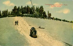 MA - Boston. Franklin Park, Tobogganing