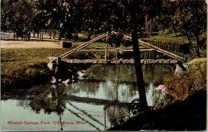 Owatonna Minnesota~Mineral Springs Park~Rustic Log Footbridge~1911 Postcard