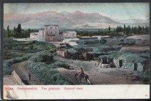 Palestine Postcard - Jericho, Gesamtansicht, Vue Generale   T3020
