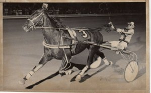 HAMILTON, Ontario, Flamboro Downs Harness Racing, LURING STAR wins
