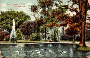 Illinois Chicago Scene In Lincoln Park 1908