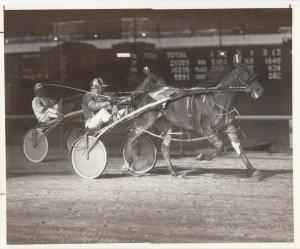 SPORTSMAN'S Park, Harness Horse Race, MISTY ANNA winner, Sept. 17, 1982