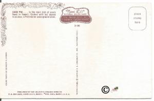 Vintage Hawaii Postcard, Luau Pig Feast Nani Li'i National Color Card