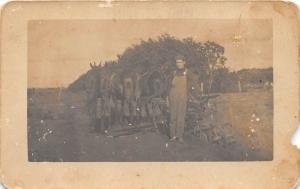 C36/ Occupational Real Photo RPPC Postcard c1910 Horse Farm Flow Farmer 8