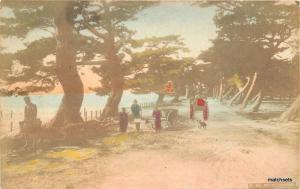 c1910 Hand Colored Rural Natives Road cart Lake Japan postcard 3343