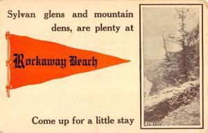 Rockaway Beach New York? Scenic View Pennant Flag Antique Postcard K106167