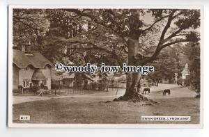tq0090 - Hants - Early View of Ponies Grazing on Swan Green, Lyndhurst- Postcard