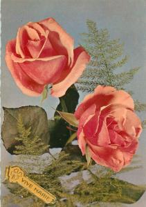 Roses postcard Vive Marie greetings