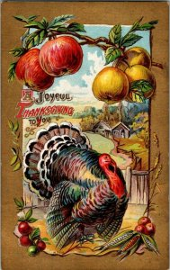 1910 Thanksgiving  Embossed Post Card Turkey Apples Very Colorful P2