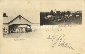 tonga, NUKUʻALOFA, Tongatapu Island, Fogoloa Premises (1904)