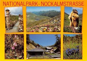 Nationalpark Nockalmstrasse Kaernten Neueroeffnete Panorama Innerkrems