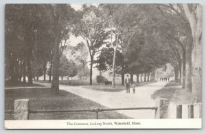 Wakefield Massachusetts~Father Son Stroll on the Common Path~c1910 B&W Postcard