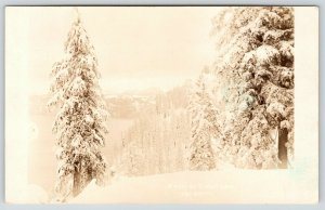Crater Lake California~Trees Are Flocked~Real Photo Postcard~RPPC c1913