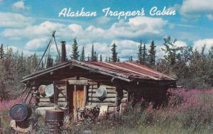 Typical Trapper's Cabin - Interior of Alaska AK