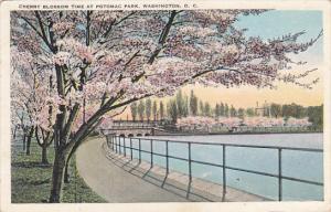 Beautiful Japanese Cherry Blossom Vista Potomac Park Washington DC 1926