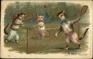 Fantasy - Cats Playing Tennis A HOT GAME c1910 Postcard G19