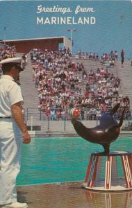 California Rancho Palos Verdes Greetings From Marineland Of The Pacific