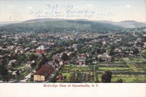 HORNELLSVILLE, New York, PU-1907; Bird's Eye View