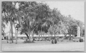 Silver Springs Florida~Sun Plaza Motor Manor~Standard Chrome Postcard