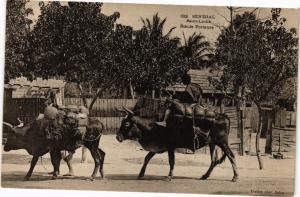 CPA Senegal-Saint Louis-Boeufs Porteurs (235372)