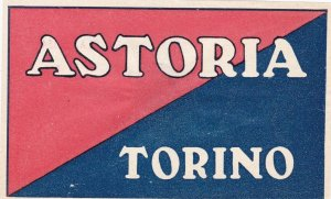 Italy Torino Hotel Astoria Vintage Luggage Label sk3450