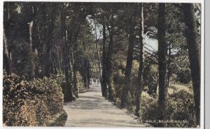 Dorset; Invalids Walk, Bournemouth PPC From National Series, Unposted, c 1910's