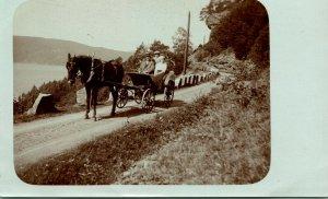Vtg Carte Postale Cppr 1900s Richel & Ses Cheval Rhubarbe - Horsedrawn Carrosse