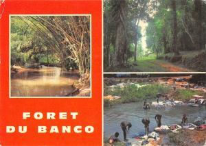 BT2362 Cote d Ivoire Foret de Banco   Ivory Coast