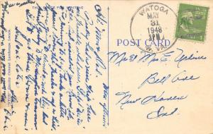 Watoga West Virginia~Cows Along Roadside~1948 Postmark~Linen Postcard
