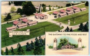 LIVE OAK, Florida FL  Roadside BLUE LODGE HOTEL COURT ca 1940s Linen   Postcard