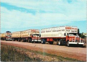 Beef Road Trains Western Queensland Australia Trucks UNUSED Vintage Postcard C3