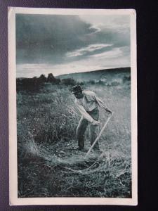 Farming Theme A MAN SCYTHE THE GRASS IN FIELD - Old Postcard