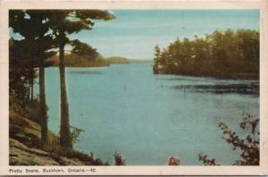Pretty Scene Buckhorn ON Ontario Peterborough County c1948 Vintage Postcard D47