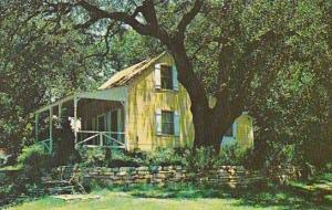 Texas Federicksburg Beautiful Live Oak