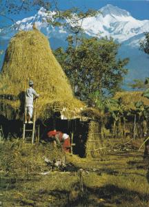 Local House, Hay House, Mt. Annapurna, NEPAL, 50-70's